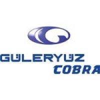 guleryuz logo